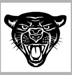 panther head - isolated on vector image