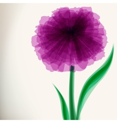 Purple transparent flower vector image