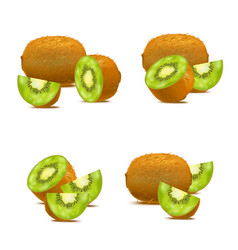 realistic detailed 3d whole kiwi and slices set vector image