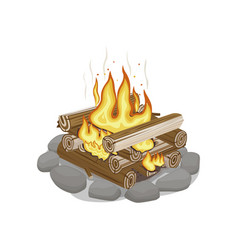 Start of firewood surrounded by stones burning vector