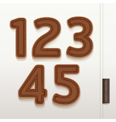 Alphabet Numbers Leather Skin Texture vector image vector image