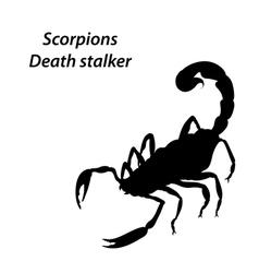 Deathstalker vector