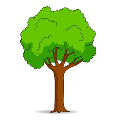 cartoon tree isolated on white background vector image