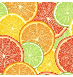 Abstract color background with citrus fruit vector image