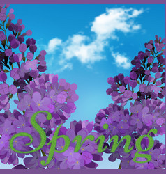 Blooming violet lilac flowers - floral background vector