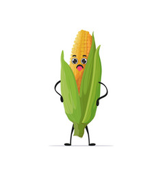 cute fresh corn character tasty mascot vegetable vector image