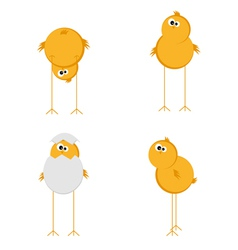 Funny chicken set vector