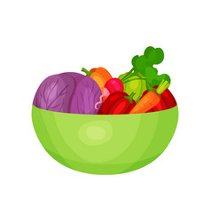green plastic bowl with fresh ingredients for vector image