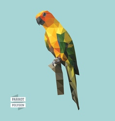 parrot polygon vector image