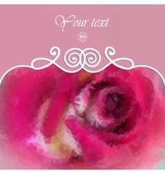 beautiful background with pink rose vector image vector image