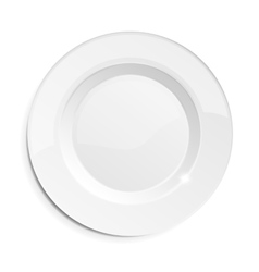 realistic empty dish plate vector image