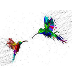 abstract of low poly couple hummingbird with vector image