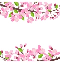 Blossoming cherry spring background apple tree vector