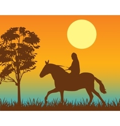 Horseman on vector