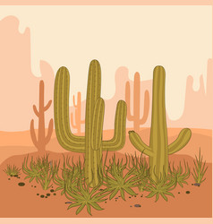 Desert landscape cactus and mountains sunset in vector