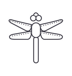 dragonfly line icon sign on vector image