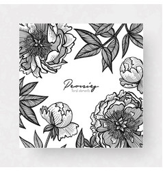 graphic detailed cards with peony and leaves vector image