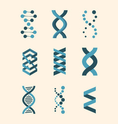 molecule structure dna helix set genetic code vector image