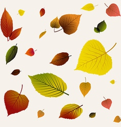 Autumn abstract floral background pattern vector image vector image