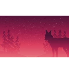 Silhouette of wolf and spruce vector image vector image