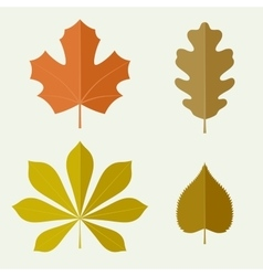 Autumn leaves in flat style vector image vector image
