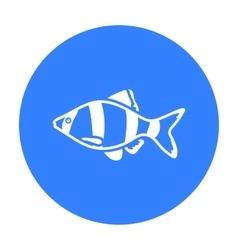 Barbus fish icon black Singe aquarium fish icon vector