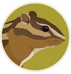 Chipmunk wildlife animals rounde frame vector