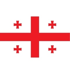 Georgia flag image vector image