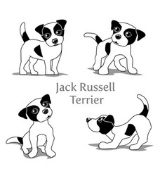Jack russell vector