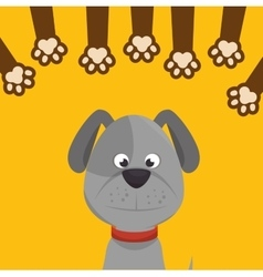 doggy with paw print icon design vector image