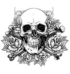 graphic human skull with crossed bones and roses vector image