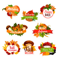 autumn icon of fall leaf pumpkin acorn vector image
