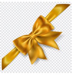 beautiful bow with diagonally ribbon vector image