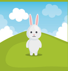 cute rabbit in landscape vector image