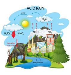 Diagram showing acid rain pathway on white vector
