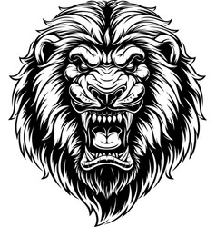 ferocious lion head vector image