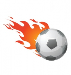 flaming ball vector image