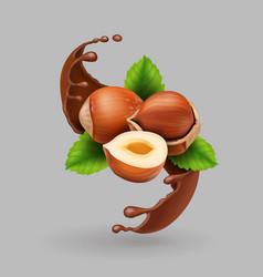 hazelnut and chocolate realistic splash vector image
