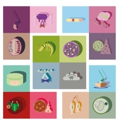 Modern flat icons collection shadow food vector image