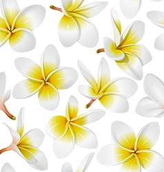 tropical flowers seamless vector image