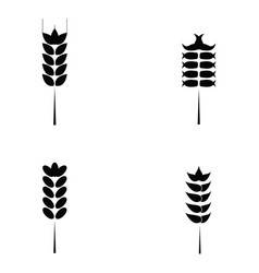 cereals icon set with rice wheat vector image