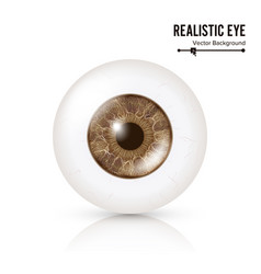 photo realistic eyeball human retina vector image vector image