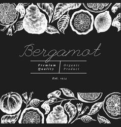 bergamot branch design template kaffir lime frame vector image