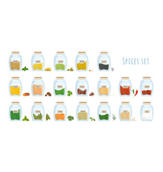 Bundle of spices stored in closed glass jars vector