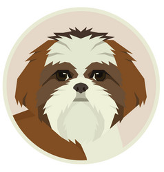 dog collection shih tzu geometric avatar icon vector image