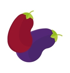 Eggplant or aubergine vegetable isolated purple vector