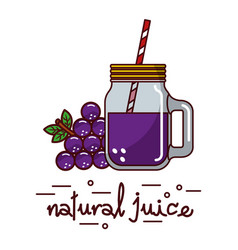 grape fruit and natural juice glass and straw vector image