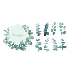 Set eucalyptus leafs and vector