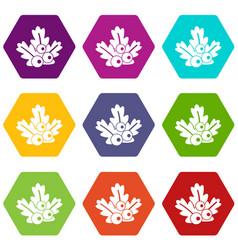 xmas branch icon set color hexahedron vector image