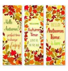 Autumn season and fall nature banner set design vector